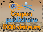 Coupon publicitaire 1000 visiteurs, 80 points