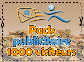 Pack publicitaire 1000 visiteurs, 80 points